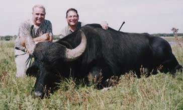 Water buffalo hunts in Argentina